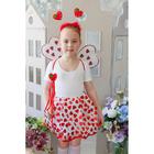 Карнавальный набор «Сердечки», крылья, ободок, юбка, жезл, 3-5 лет - фото 105446182