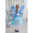 Карнавальный набор «Бабочка», 2 предмета: крылья, юбка