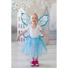 Карнавальный набор «Волшебная фея», 2 предмета: крылья, юбка - фото 105446185
