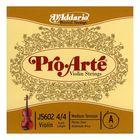 Отдельная струна D'Addario J5602-4/4M Pro-Arte  А/Ля для скрипки размером 4/4