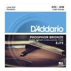 Струны для мандолины D'Addario EJ73  фосф.бронза, Light, 10-38