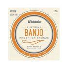 Струны для 5-струнного банджо D'Addario EJ55 фосф.бронза, Medium, 10-23