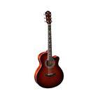 Акустическая гитара Homage RA-A01C-NL  с вырезом
