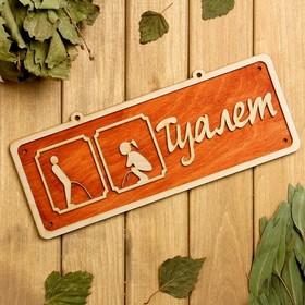 Табличка 2-слойная 'Туалет 2', 30х12см Ош