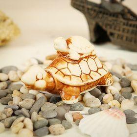 Aquadecor for a turtle aquarium beige