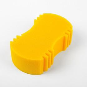 Sponge ZEBRA