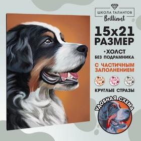 Алмазная вышивка с частичным заполнением «Собака», 15 х 21 см