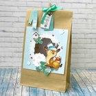 Пакет подарочный без ручек с декором «Пора чудес», 15 × 28 см