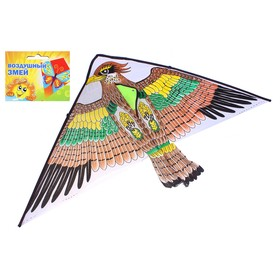 "Kite ""Bird"" with fishing line"