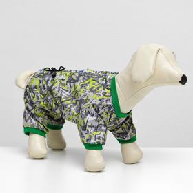 Комбинезон для собак цветной, мальчик, S ( дс 20-22 см, ош 24-26 см, ог 32-34 см ) Ош