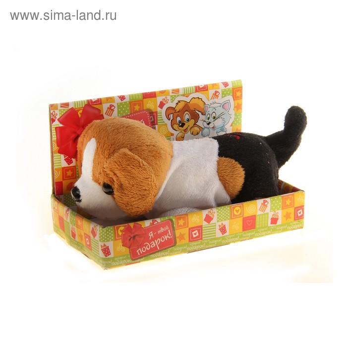 """Мягкая игрушка интерактивная """"Щенок"""" с чёрным хвостиком, в коробке"""