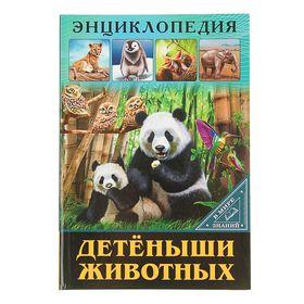 Энциклопедия «Детёныши животных»