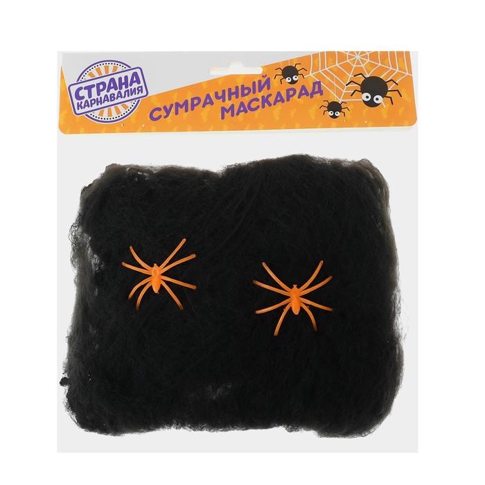 Прикол «Чёрная паутина с пауками» - фото 449632
