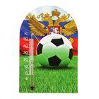 Термометр Чемпионат мира на акриловой липучке 1-1