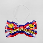 "Bow of the carnival ""I'm for Russia"", set of 6 PCs"