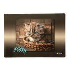 Накладка на стол дизайнерская «Котёнок в лукошке» А4+, 33,7 х 24,2 см, для девочки