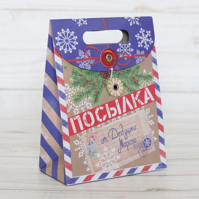 Пакет подарочный «Посылка от Деда Мороза», 18 × 23 × 10 см