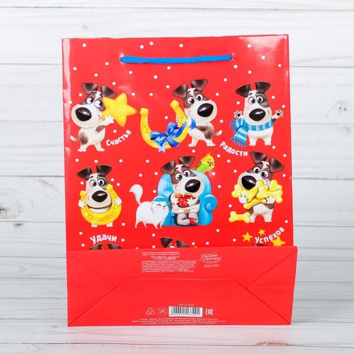 Пакет ламинированный вертикальный «Удачи, счастья, успехов!», 18 × 23 × 8 см