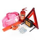 Набор техосмотр REXXON авто-леди, 34 продукта, водонепроницаемая сумка, розовый