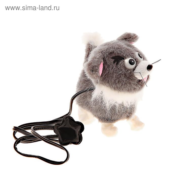 """Мягкая игрушка интерактивная """"Кошка"""" ходит от поводка, виляет хвостом"""