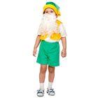 """Карнавальный костюм """"Гном"""", плюш лайт, жилет, шорты, колпак, борода, рост 92-116 см"""
