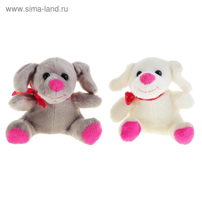 """Мягкая игрушка """"Собачка с бантиком"""", 2 цвета, МИКС"""