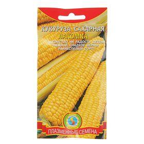 Семена Кукуруза сахарная 'Лакомка', 4 г Ош