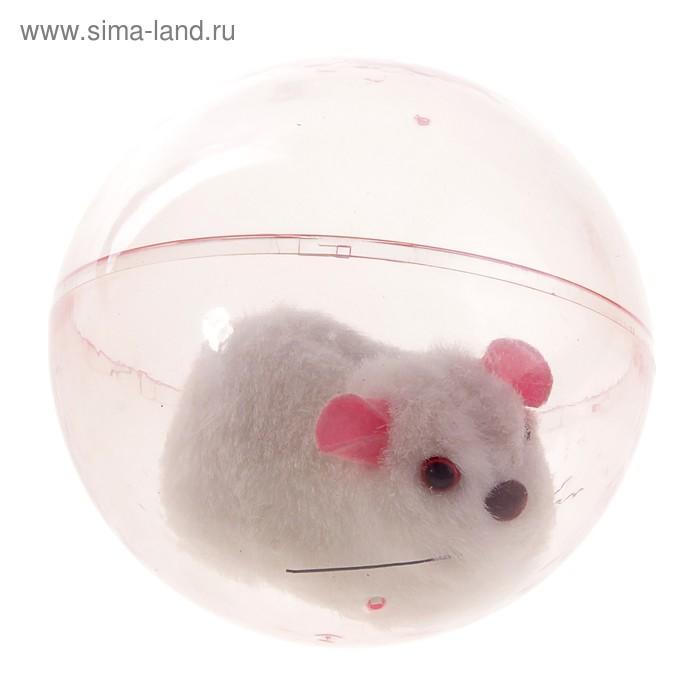"""Прикол """"Мышь в шаре"""""""