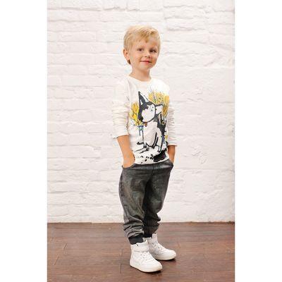 Джемпер для мальчика, рост 116 см, цвет белый 152-315-01
