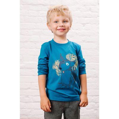 Джемпер для мальчика, рост 110 см, цвет синий 152-315-08