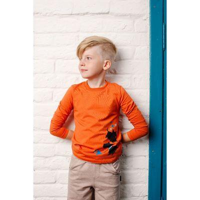 Джемпер для мальчика, рост 116 см, цвет терракотовый 152-315-51