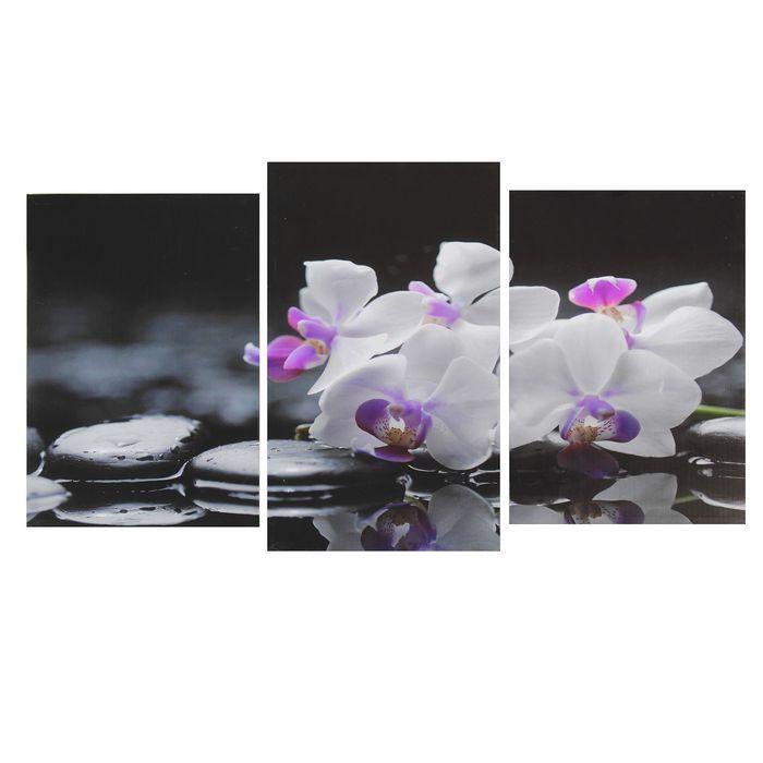 """Модульная картина на подрамнике """"Веточка орхидеи"""" (2-31х44; 1-31х51) 93*51 см"""