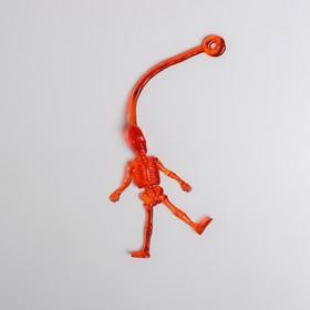 Липучка «Скелет», цвета МИКС