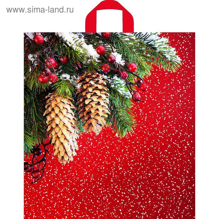 """Пакет """"Шишки на красном"""", полиэтиленовый с петлевой ручкой, 43 х 40 см, 35 мкм"""