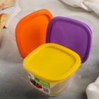 Контейнер пищевой 500 мл BioFresh квадратный, цвет салатовый