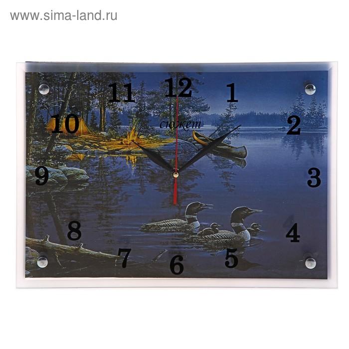 """Часы настенные прямоугольные """"Утки и вечер"""", 25х35 см"""