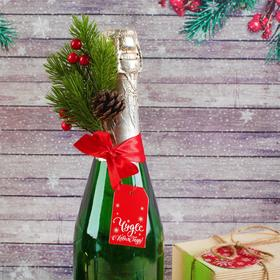 """The decoration on the bottle """"Wonders in the New Year!"""""""