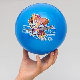 """Щенячий патруль. Мяч детский """"Скай"""" 22 см, 60 гр, цвета МИКС"""