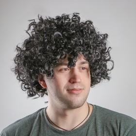 "Carnival wig ""Curly hair"", black"