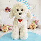 """Мягкая игрушка """"Собака Пудель"""", цвет молочный, 43 см"""