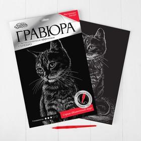 Гравюра «Полосатый котёнок» с металлическим эффектом серебра А4