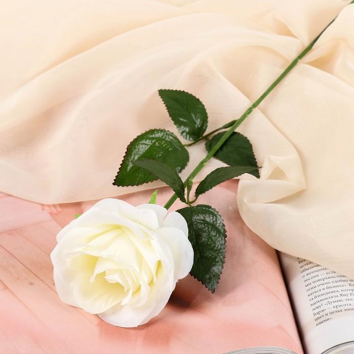 """Цветы искусственные """"Роза Глория"""" 9*60 см, белая - фото 4455870"""