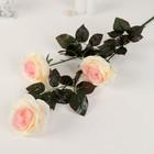 """Цветы искусственные """"Роза Бурито"""" 13*90 см, кремовая"""