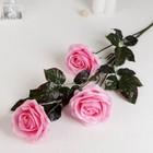 """Цветы искусственные """"Роза Бурито"""" 13*90 см, розовая"""