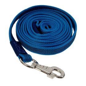 Поводок с латексной нитью двухсторонний, 3 м х 2 см, нейлон, синий