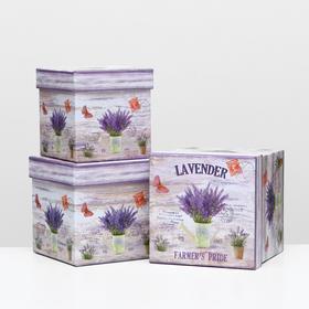 "Set boxes 3in1 ""Lavender"", 16 x 16 x 16 - 13 x 13 x 13 cm"