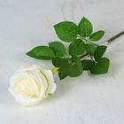 """Цветы искусственные """"Роза экспрессия"""" 9,5*66 см, белая"""