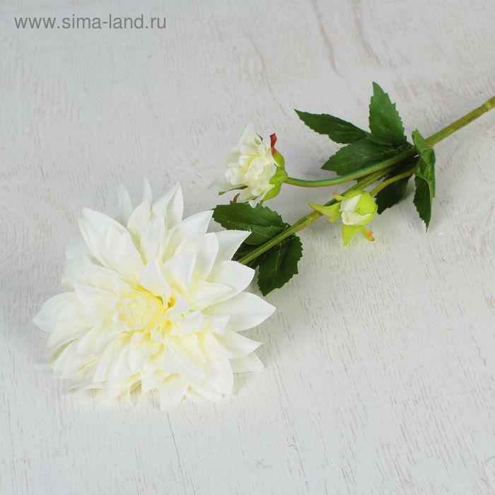 """Цветы искусственные """"Георгин метрополь"""" 14*53 см, белый"""