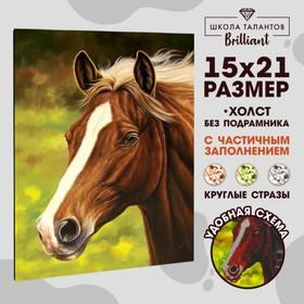 Алмазная вышивка с частичным заполнением «Лошадь», 15 х 21 см. Набор для творчества