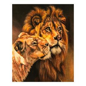 Роспись по холсту «Пара львов» по номерам с красками по3 мл+ кисти+инстр-я+крепёж, 30×40 см
